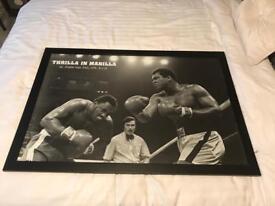 Framed Mohammad Ali poster
