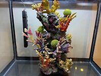 198L Boyu Aquarium Fish Tank and Cabinet Setup