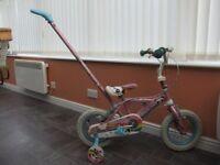 Panda Pals bike
