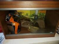 2ft tortoise vivarium