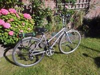 Special offer. reduced for 7 days only. Claud Butler Odyssey Shimano, Dutch style Hybrid, 8 speed,
