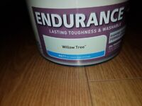 Dulux Endurance Willow Tree 3/4 tine of paint