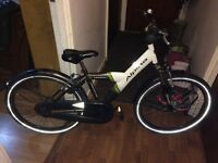 Alpina yabber lady bikes for sale in magnifique condition