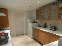 Single Room for Rent, Shepherds Bush W12, Acton W3, Hammersmith W6, Chiswick W4, RENT £135P/W
