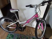 Pink ladys or teenager Bike TREK 220, WAS £350, NOW ONLY £50. BELL. Delivery is available