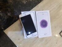 iPhone 6 withe silver