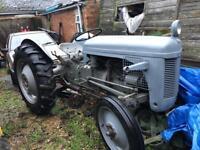 Grey fergie tea20 1949 tractor