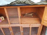 Two tier rabbit/guinea pig hutch
