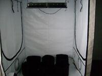 Indoor tomatoe plants grow equipment