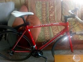 Specialized Allez Sport Bike - Great road bike