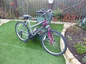 Ladies Bicycle 19'' Frame