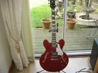 Indie Semi Hollow Electric Guitar