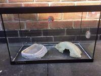 Vivarium suitable for Gecko etc, Glass vivarium complete with heat mat and lamp. Size 20x10x13inch.