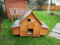 Hen chicken house coop and run