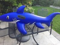 Shark Blue Inflatable Ride On