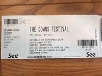 2 tickets for Downs Festival, Bristol