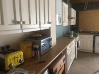Free kitchen cabinets- need a lot of attention