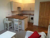 One bedroom refurbished flat on Albert Street ( Leith Walk ) NO TENANT FEES Walk