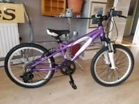 Carrera 'Luna' kids bike