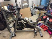 Spinner pace bike