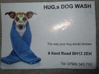 Dog wash -- Hug's Dog Wash --- The way your dog would choose