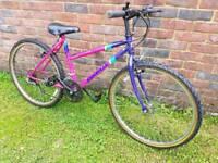Small ladies mountain bike