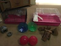 Hamsters cages and toys
