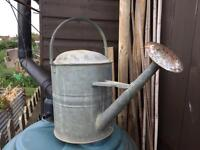Old watering can 2 gallon