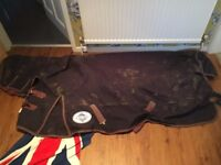 6.0ft 200 gram turnout rug and got a neck with it