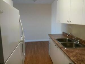 Nicely Renovated 1 Bdrm Suite Avail Today!    $785/mth