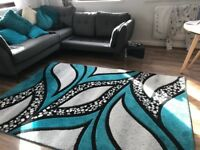 Beautiful Teal Rug