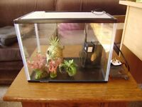 Small fish tank with pump and filter and some accessories