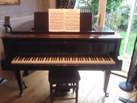 WELMAR Baby Grand Piano by Bluthner & Co.