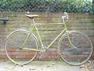 Beautiful lightweight Single Speed Freewheel bike, not fixie, Serviced