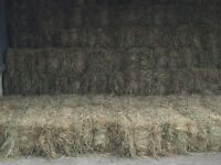 Small Meadow Hay Bales
