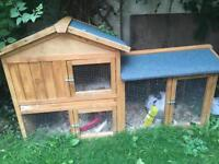 Rabbit with indoor and outdoor hutch