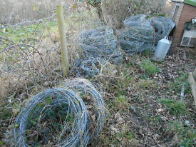Barbed Wire, Various lengths