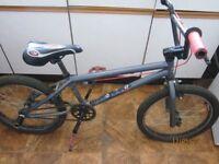 "Mongoose 20"" Stunt Bike"