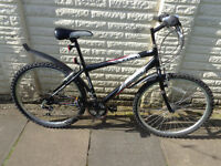 professional bike, new lights, d-lock serviced ready to ride FREE DELIVERY