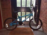 Boys 20 inch BMX Bike