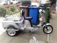 Electric bike trike