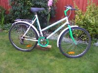 Townsend Hedgehopper. Large adult mountain bike.