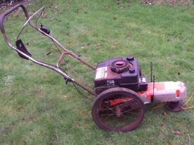 DR strimmer - DR trimmer - rough cut 2 wheeled strimmer mower