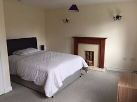 Double Rooms - Bromsgrove - From £80pw