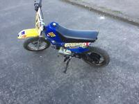 Cheap and cheerful pit bike £250