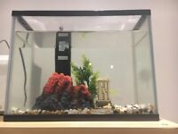 Fish tank 20L with accessories