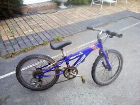 "Specialised Hotrock, 20"" wheel, 7 speed mountain bike."