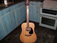 Takamine G series acoustic guitar G320 ideal starter guitar