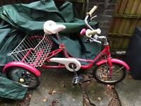 Mission Tricycle 16inch