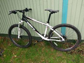 Calibration Two Two Mountain Bike Rock